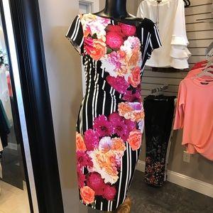 Gorgeous Joseph Ribkoff Dress